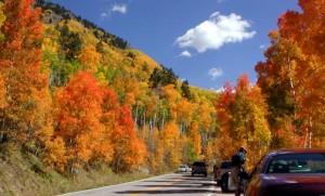 aspen dans le colorado en automne
